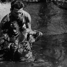 Wages Of Fear, The (Le Salaire De La Peur)
