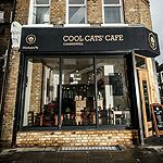 Cool Cats Cafe