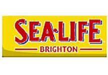 The Sealife Centre