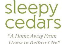 Sleepy Cedars B & B