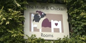 The Mole & Chicken