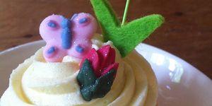 Kandy Cupcakes