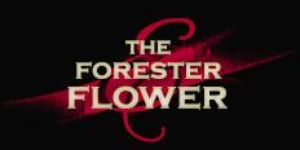 Forester And Flower