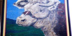 The Bulls Head