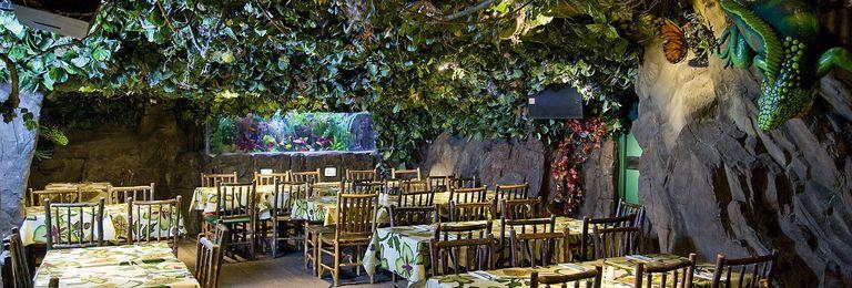 Rainforest cafe image gallery and photos w1d 7eu for Rainforest londra