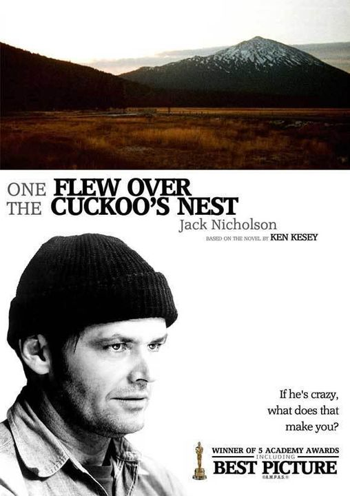 essays on one flew over the cuckoos nest theme